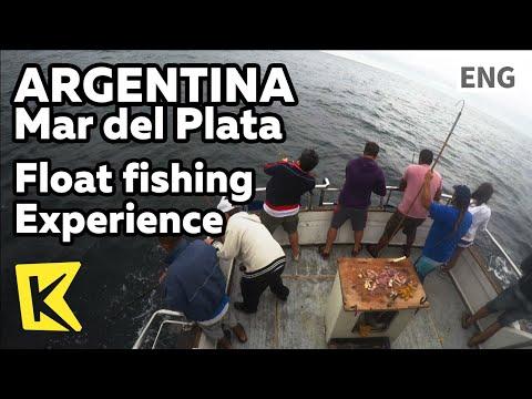 【K】Argentina Travel-Mar del Plata[아르헨티나 여행- 마르델플라타]배 낚시 체험/Float fishing/Salmon/Night view