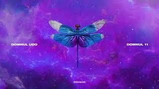 Domnul Udo - Trabajar feat. Amuly (Audio)