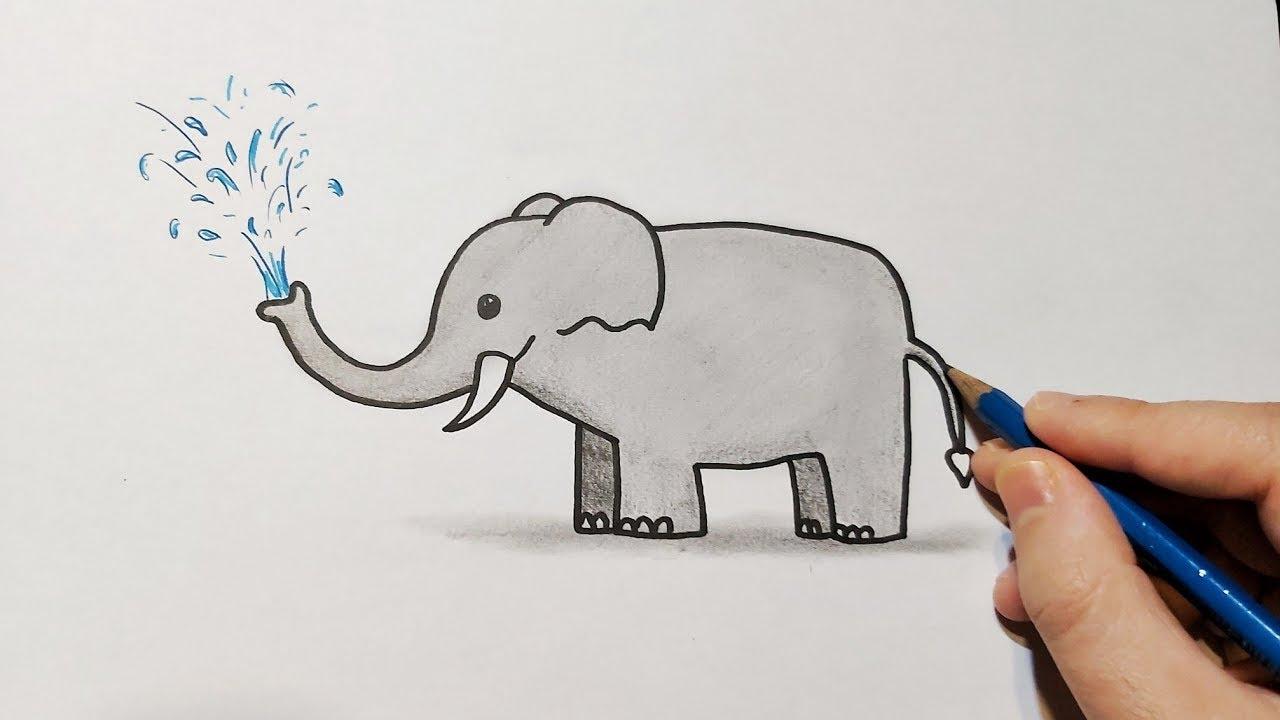 Dessin Elephant Facile Comment Dessiner Un Elephant Etape Par Etape Youtube