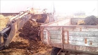 MTZ excavator go'ng yuklash.