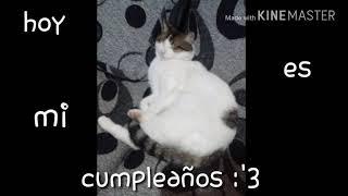 #felizcumplemagui