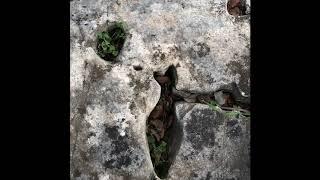 Kaya Mezarından Çıkanlar