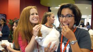 Axosoft's #ItWasNeverADress STEAM Conference  2015 Highlight Video
