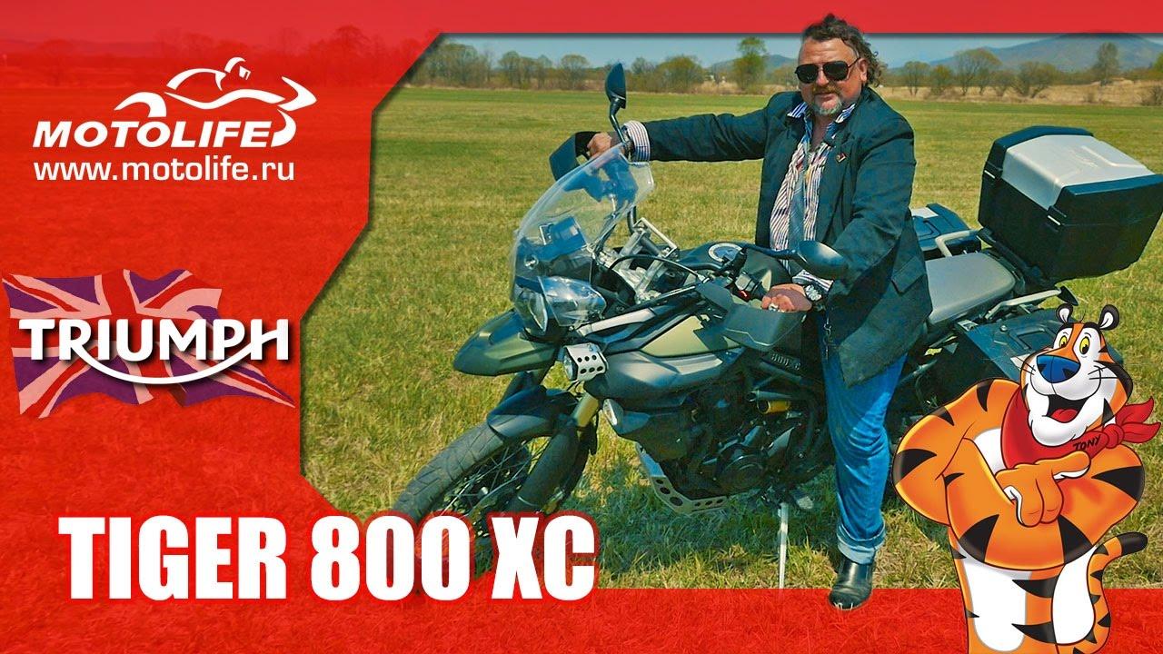 Triumph Tiger 800 Xc обзор Youtube