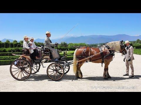 Competition Of Historic Carriages Venaria Reale Italy 2017, 4° Concorso Internazionale di Attacchi