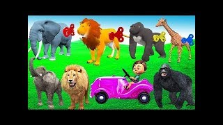 Learn Colors Keys With Animals For Children - Wild Animals Toys SuperMarket Shopping Cart For Kids