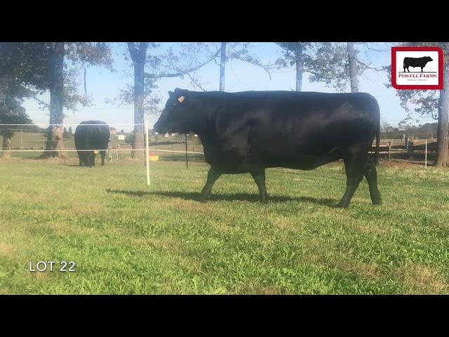 Powell Farms Lot 22