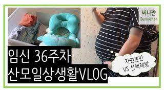 [Vlog] 임신 36주차 산모일상생활 | 선택제왕결정…