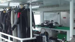 Diving in Cocos Island, Costa Rica (Wind Dancer) Part1