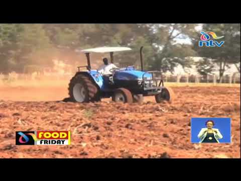 FOOD FRIDAY: Farmers getting back to farms at onset of the planting season