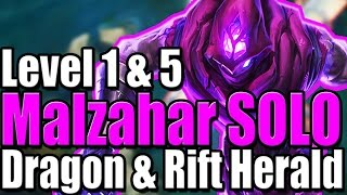 MALZAHAR LVL 1 SOLO DRAGON | LVL 5 RIFT HERALD SOLO - League of Legends