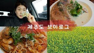 제주도여행  집에서 얼그레이티 케익먹기 유채꽃 전복김밥…