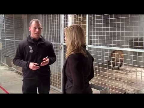 Certificate in Basic Animal Care Science S2 Episode 1
