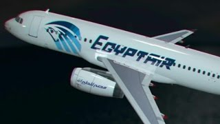 Missing EgyptAir plane wreckage found