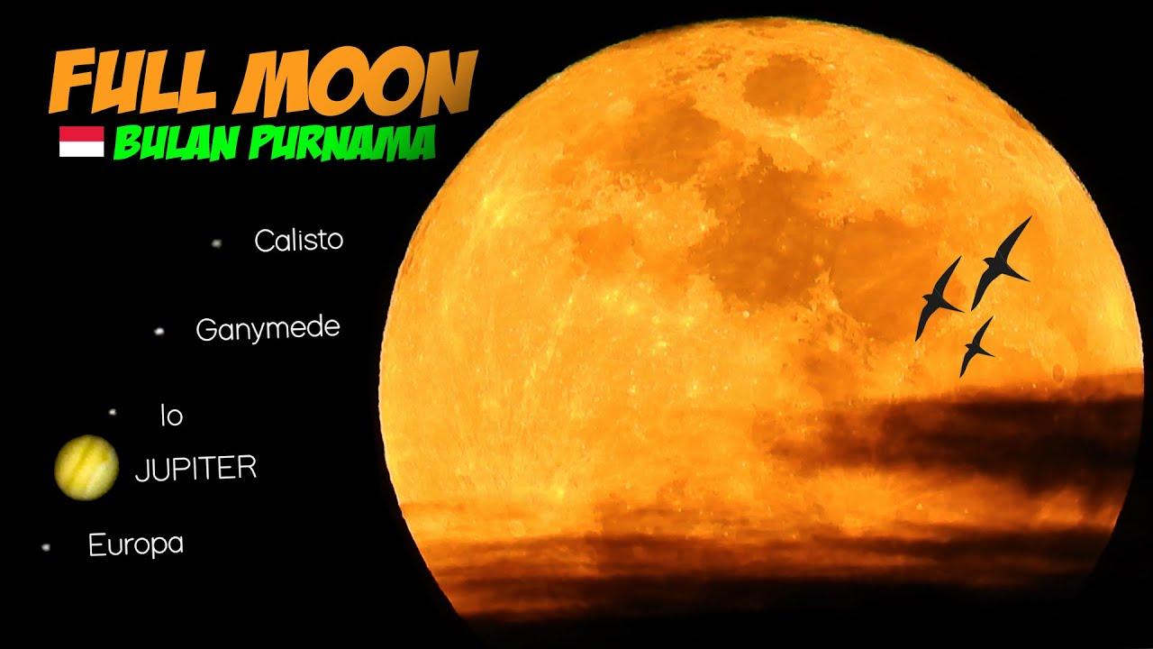 ZOOM BULAN PURNAMA | FULL MOON Nikon P1000 No Telescope