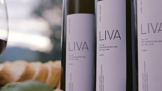 LIVA - Imagefilm