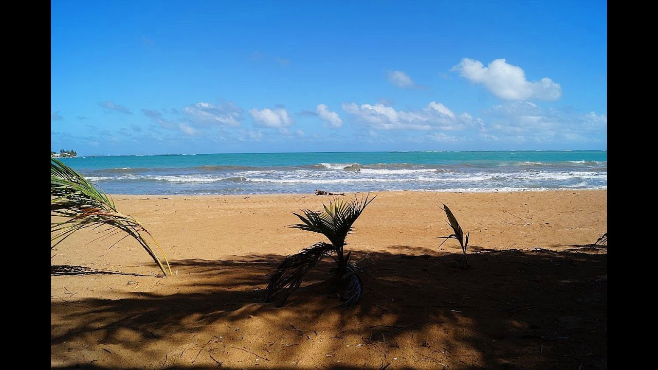 Beach Front Condo Rio Grande Puerto Rico Apartamento Venta