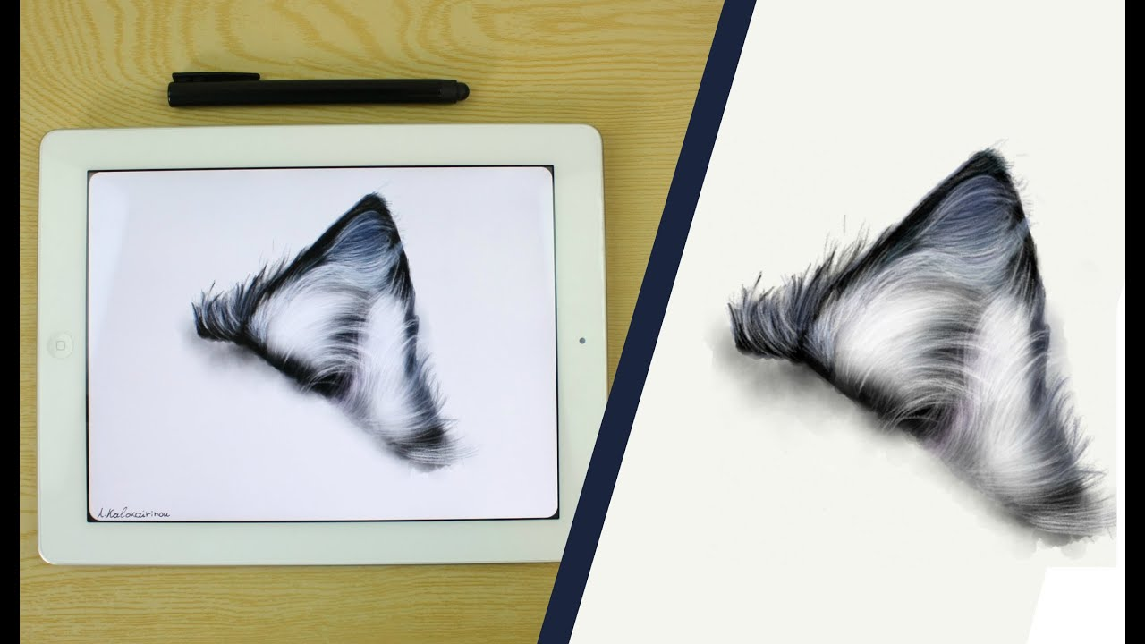 How To Draw A Fur Ear Wolf On Ipad With: Paper By Fiftythree