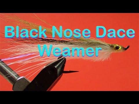 Beginner's Fly Tying Series: Easy Streamer Series - Black Nose Dace Weamer