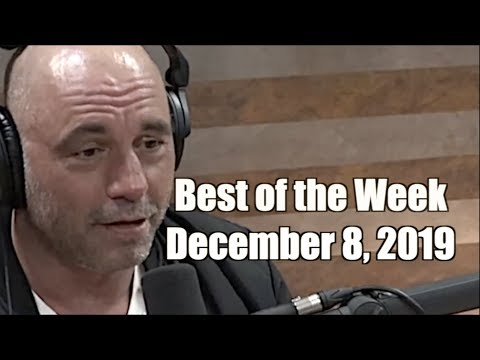 Best of the Week - December 8, 2019  - Joe Rogan Experience