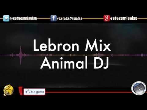 Lebron Mix By Animal DJ