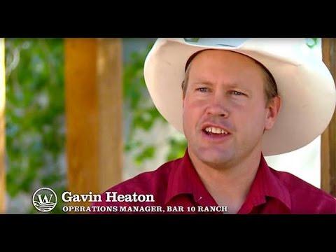 Bar 10 Ranch - Grand Canyon