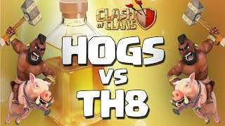 Clash Of Clans | Best Th8 Hog Attack Strategy of 2017 | Lvl 4 Hogs Vs Th8 | Mass Hog Attack Strategy