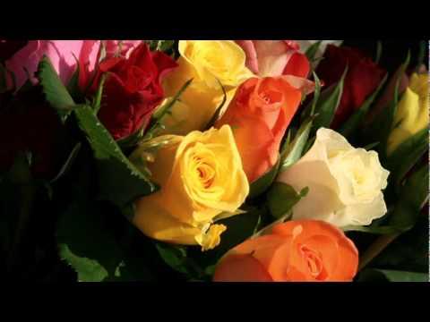 życzenia Urodzinowe Dla Mamy Haliny Doovi