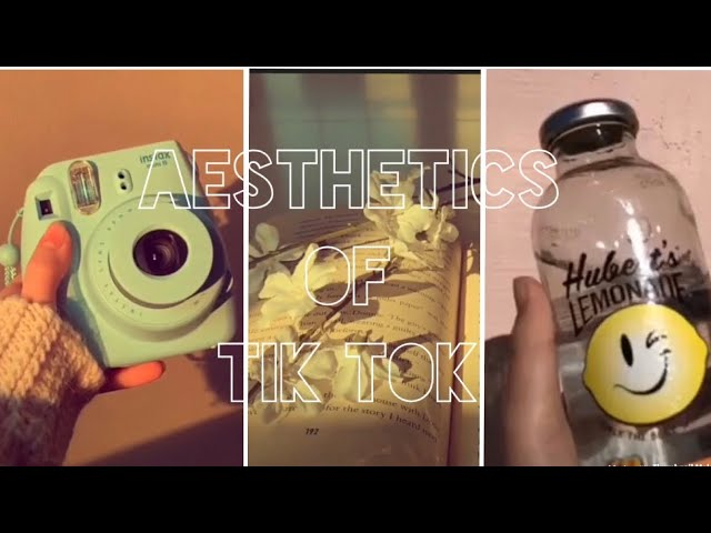 Aesthetic Tiktok Compilation Toasterstrudel Youtube This is how to change tiktok profile pic to any picture you want on your smartphone. aesthetic tiktok compilation
