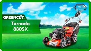 Tondeuse moteur à essence OHV 7,5cn largeur de coupe 21'