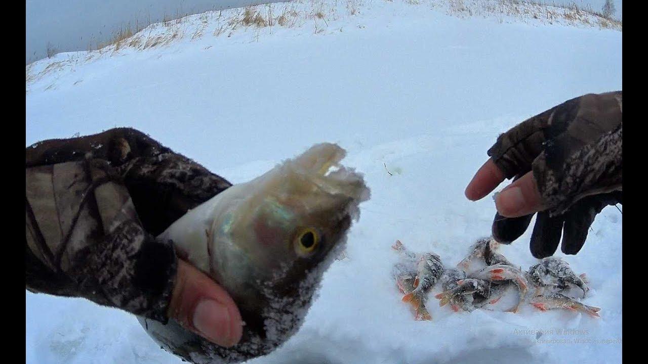 НА БОЛОТЕ ПОСТАВИЛ ЛЮБИМУЮ КОЗУ И ПОПЕРЛО!!Рыбалка 2020 ,безмотылка,ловля окуня,плотва.