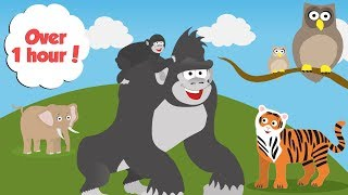 Zoo Animals For Toddlers | Learn Counting, Colours and Days of the Week