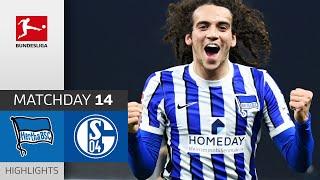 #bscs04   highlights from matchday 14!► sub now: https://redirect.bundesliga.com/_bwcs watch the bundesliga of hertha berlin vs. fc schalke 04 fro...