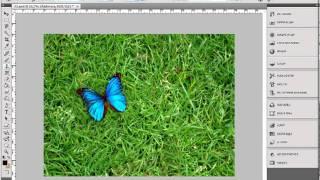 Уроки фотошопа -- Как пользоваться инструментом Штамп(http://anylaboratory.ru - Профессиональные материалы: кисти, текстуры, клипарт, фильтры для Фотошопа (Photoshop), видеоуроки., 2011-04-15T22:12:39.000Z)