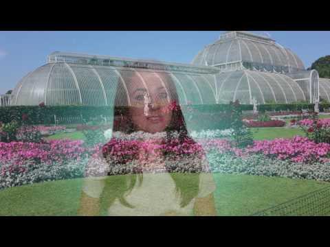 Kew Gardens, London | Video Guide