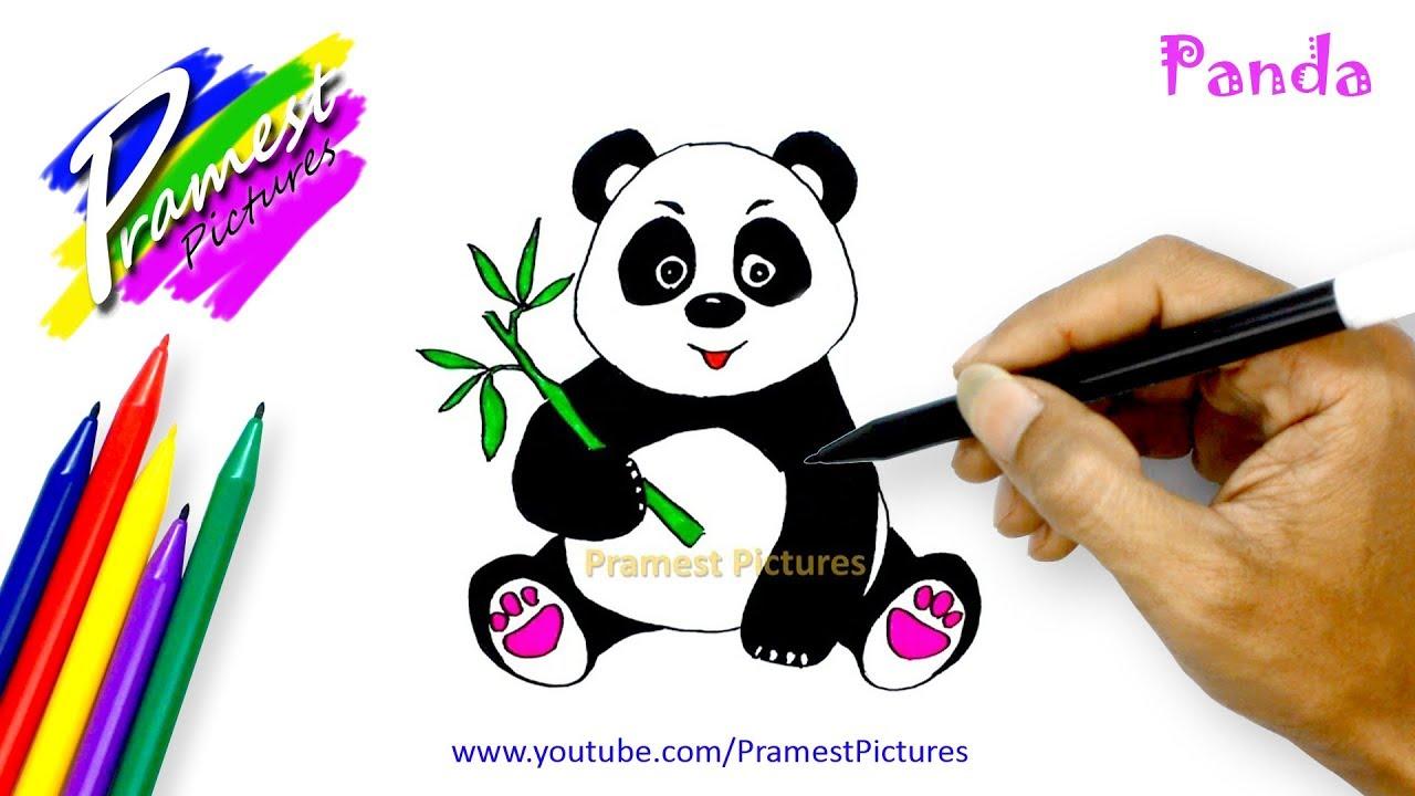 Panda Belajar Menggambar Dan Mewarnai Hewan Untuk Anak Youtube