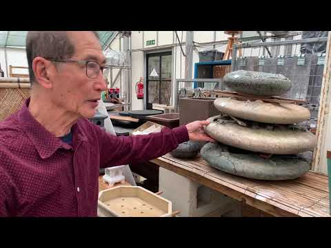 All You Need To Know About Bonsai Pots