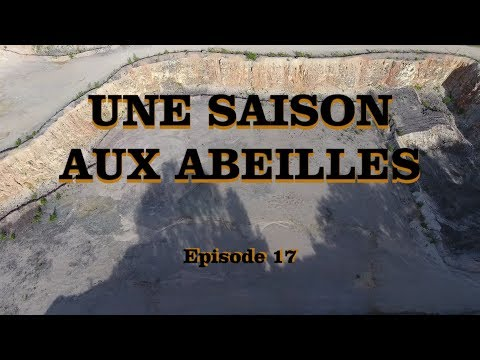 """UNE SAISON AUX ABEILLES - E17 - """"Gaille & Palabre"""""""