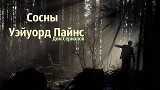 """ОБЗОР СЕРИАЛА """"СОСНЫ//УЭЙУОРД ПАЙНС"""""""