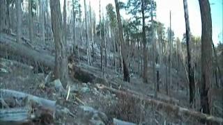 Arcadia Trail to Heliograph Peak
