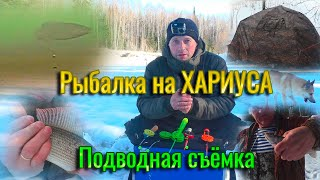 Рыбалка на ХАРИУСА с ночёвкой Подлёдная съёмка поклёвки хариуса Рыбалка в коми на таёжной реке