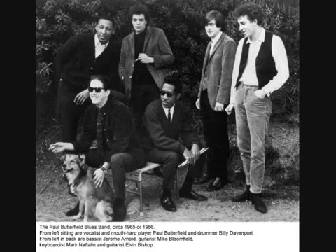 Paul Butterfield Blues Band ~ Mary, Mary