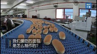 狮城时事   面包是怎么制作的?