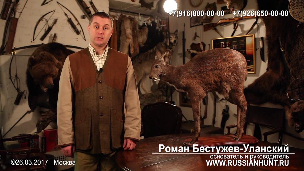 Продукты охоты купля продажа состояние на 01/01/2018 00:42 оружейный форум guns. Ru. Все про оружие. Firearms forums in russian.