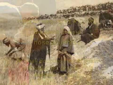 שיר המעלות - Shir Hama'alot