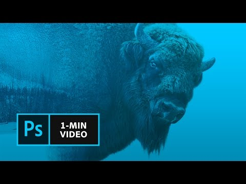 How to Make a Double Exposure in Photoshop | Adobe Creative Cloud