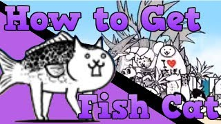 [ The Battle Cats ] - The Crazed Fish Cat - No Ubers Strategy