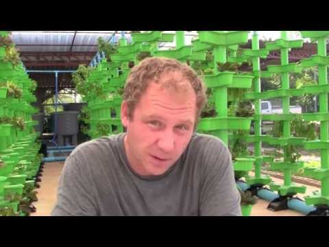 Advanced Aquaponics Part 2: Full Release of Mineralization a