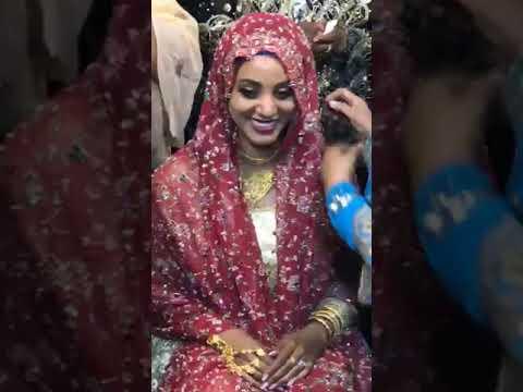 Beautiful Ethiopian Harari Wedding Ceremony