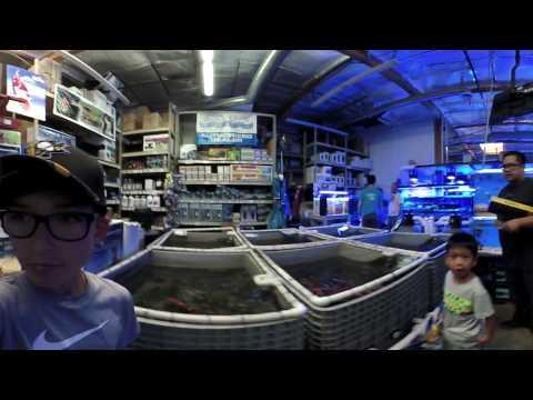 Baixar Abyss Aquatic Warehouse - Download Abyss Aquatic